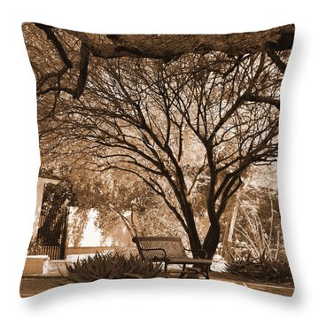 The Lonely Bench Throw Pillow by Donna Greene