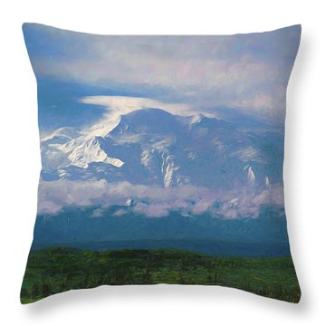 The North Face Throw Pillow
