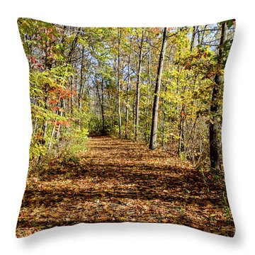 Throw Pillow featuring the photograph The Outlet Trail by William Norton