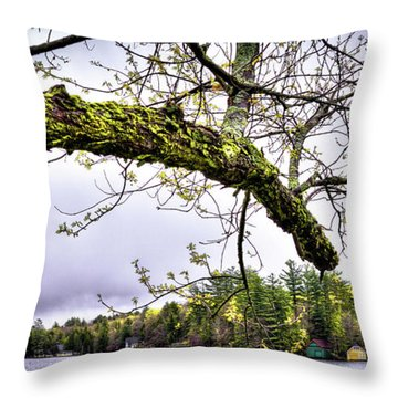 The Pond In Old Forge Throw Pillow by David Patterson