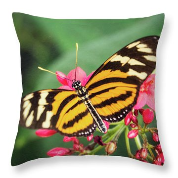 Throw Pillow featuring the photograph The Postman Longwing  by Saija Lehtonen