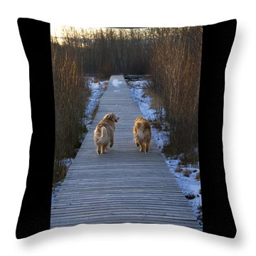 The Rainbow Bridge Throw Pillow by Rhonda McDougall