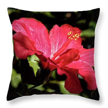 The Red Hibiscus Throw Pillow by Robert Bales