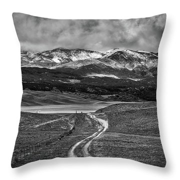 Throw Pillow featuring the photograph The Road That Leads You Home by Peter Tellone