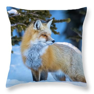 The Snow Beauty Throw Pillow