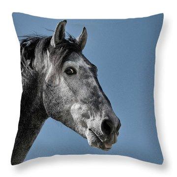 The Stallion Throw Pillow by Michael Mogensen