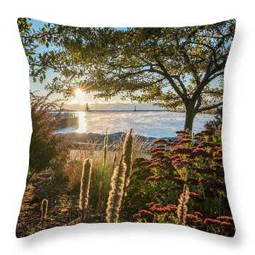 The View Throw Pillow by James Meyer