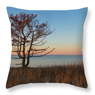 Throw Pillow featuring the photograph The View by Robin-lee Vieira