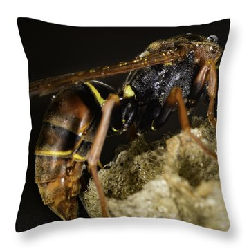 The Wasp Throw Pillow
