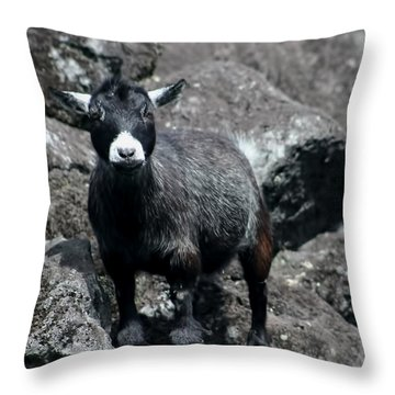 This Is My Rock Throw Pillow
