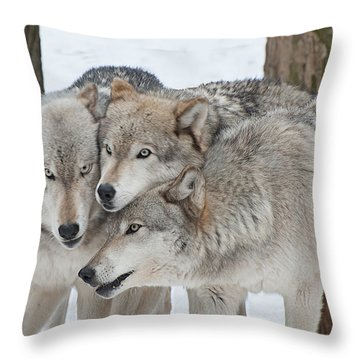 Three Wolves Are A Crowd Throw Pillow