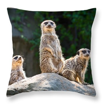 Three's Company Throw Pillow