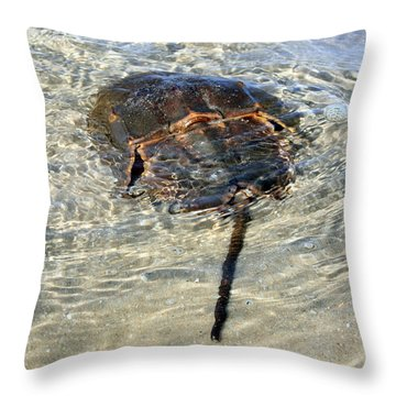Tidepool Creature Throw Pillow