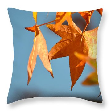 It Feels Like Fall Throw Pillow