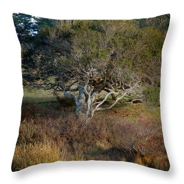 Tomales Bay Marin County California Throw Pillow by Wernher Krutein