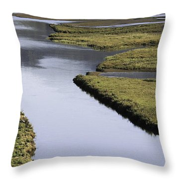 Tomales Marsh Throw Pillow
