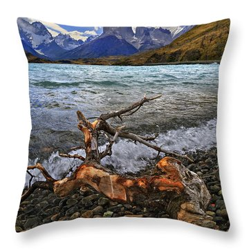Torres Del Paine 17 Throw Pillow by Bernardo Galmarini