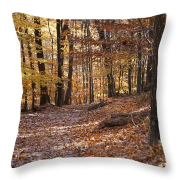 Throw Pillow featuring the photograph Trail by Heidi Poulin