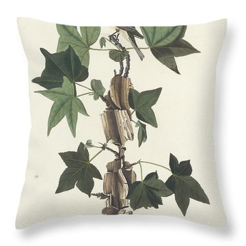 Traill's Flycatcher Throw Pillow by John James Audubon