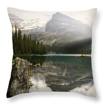 Tranquil Beauty Throw Pillow