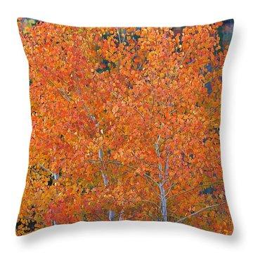 Throw Pillow featuring the digital art Translucent Aspen Orange by Gary Baird