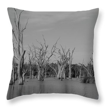 Throw Pillow featuring the photograph Tree Cemetery by Douglas Barnard