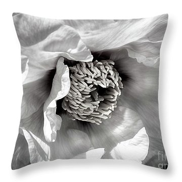 Throw Pillow featuring the photograph Tree Peony 'mystery' by Ann Jacobson