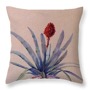 Trompe L'oeil  Throw Pillow