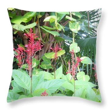 Tropical Flowers Throw Pillow by Kay Gilley