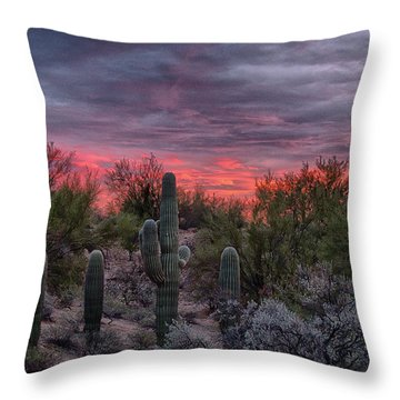 Tucson Sunset Throw Pillow