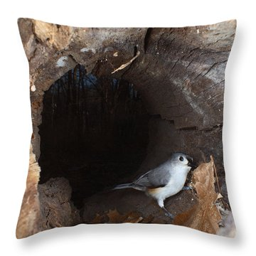 Tufted Titmouse In A Log Throw Pillow by Ted Kinsman