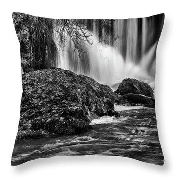 Tumwater Falls Park#1 Throw Pillow