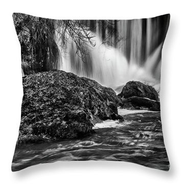 Tumwater Falls Park#1 Throw Pillow