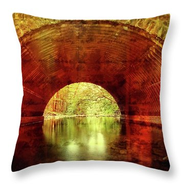 Throw Pillow featuring the photograph Tunnel Vision by Alan Raasch