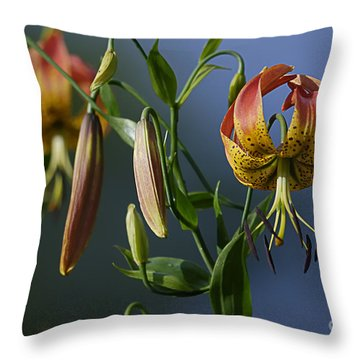 Turk's Cap Lily Throw Pillow by Randy Bodkins