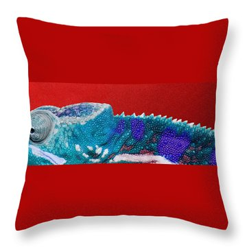 Turquoise Chameleon On Red Throw Pillow