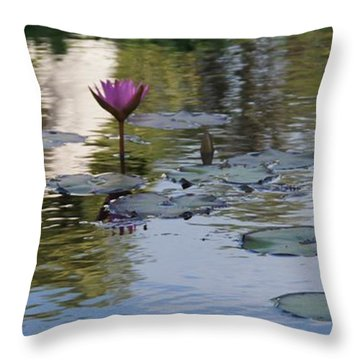 Twins Throw Pillow by David and Lynn Keller
