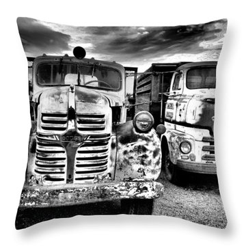 Throw Pillow featuring the photograph Two Old Beauties by Jeff Swan
