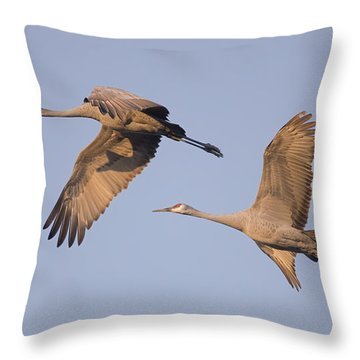 Two Together Throw Pillow