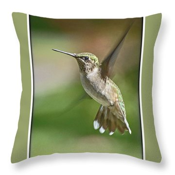Untitled Hum_bird_five Throw Pillow