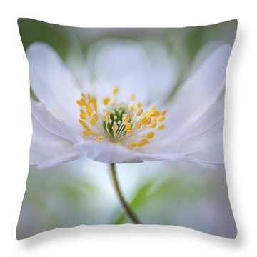 Flora Throw Pillows