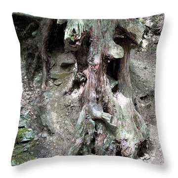 Unusual Tree Root Throw Pillow