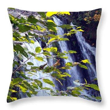 Upper Rock Creek Falls Throw Pillow