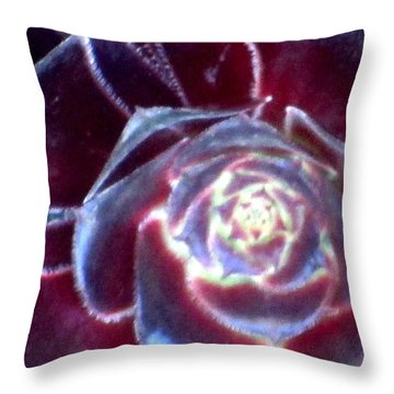 Velvet Rosette Throw Pillow