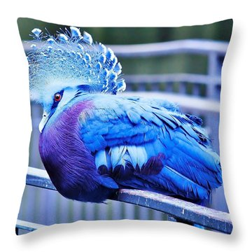 Victoria Crowned Pigeon Throw Pillow