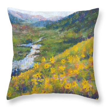 View From Baxters Gulch Throw Pillow by Becky Chappell