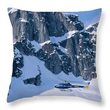 View Of Alaska Throw Pillow by John Hyde - Printscapes