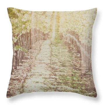 Vineyard In Autumn With Vintage Film Style Filter Throw Pillow