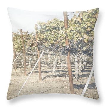 Vineyard In Autumn With Vintage Instagram Style Filter Throw Pillow
