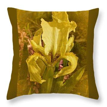 Vintage Dwarf Iris No. 2 Throw Pillow by Richard Cummings